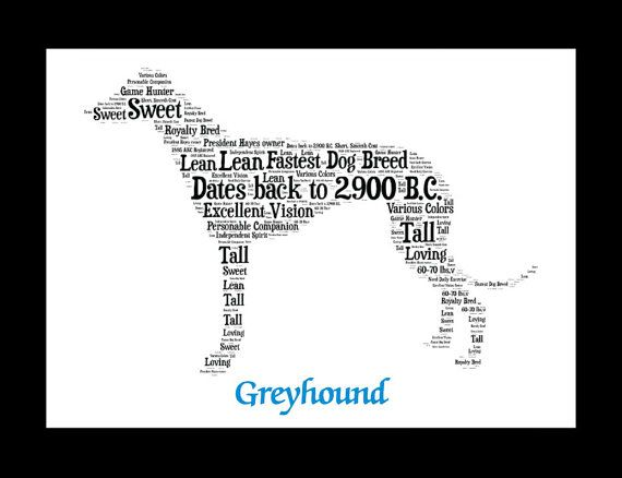 Greyhound Greyhound art Custom Personalize Pet Gift Gifts