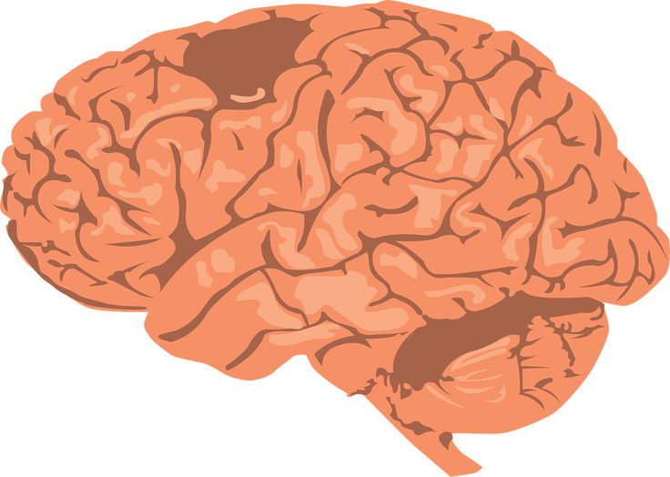 Mover el mundo con el pensamiento #ciencia