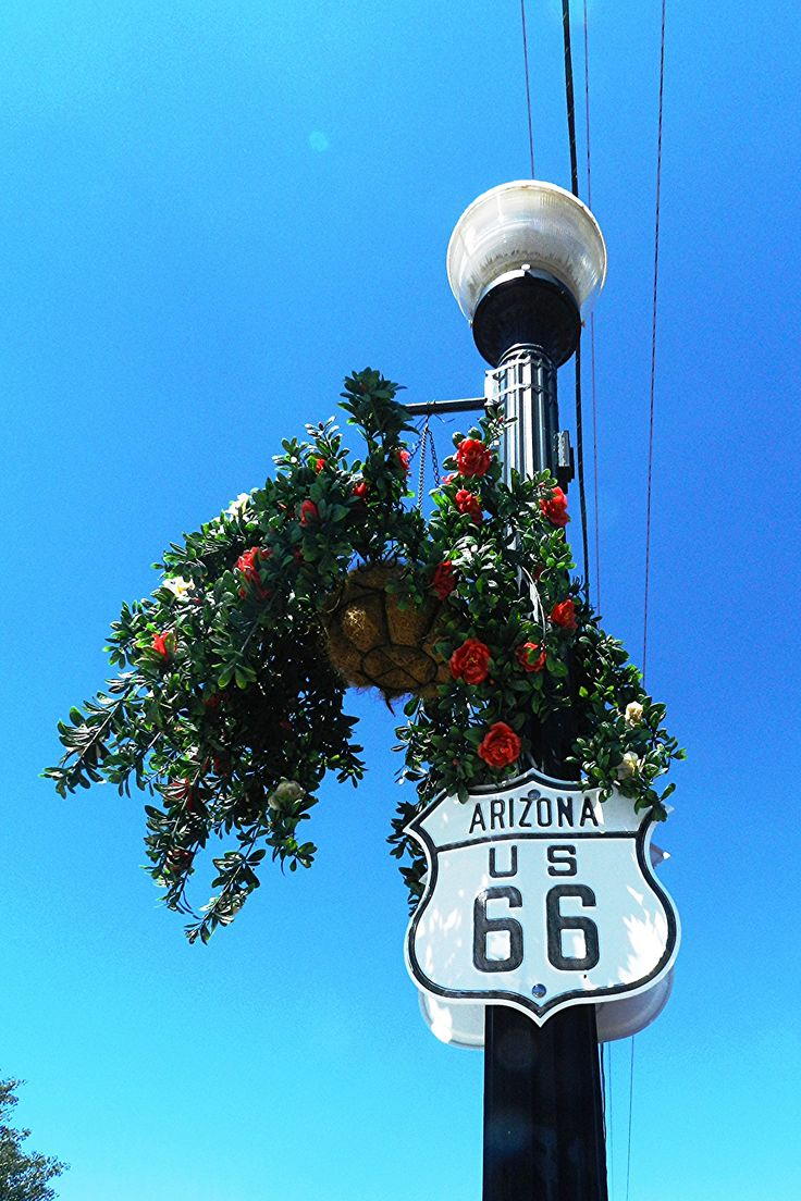 Arizona Sign With Flowers Lightpost and moon