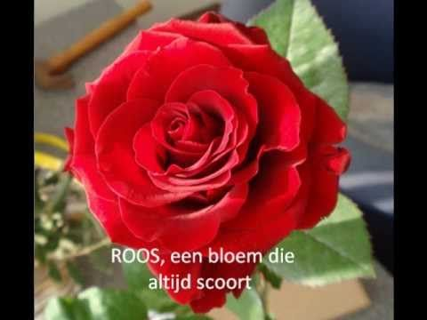 Maan Roos Vis - Do Re Mi (Sound of music)