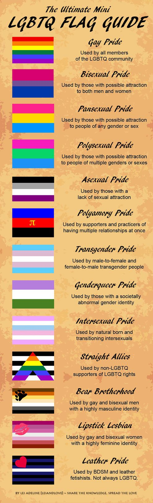 The Ultimate Mini LGBTQ Flag Guide...? So Where is the Butch Lesbian Flag...? Oh yeah, that's right, we don't exist do we...!