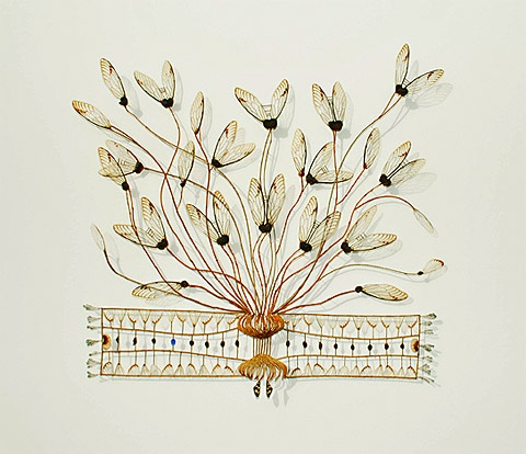 Cicada wings, seed pods, and plastic -exquisite fragility by Shona Wilson