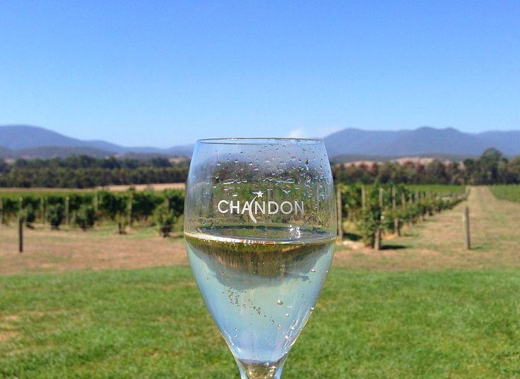 australia-yarra-valley-chandon-glass-vineyard