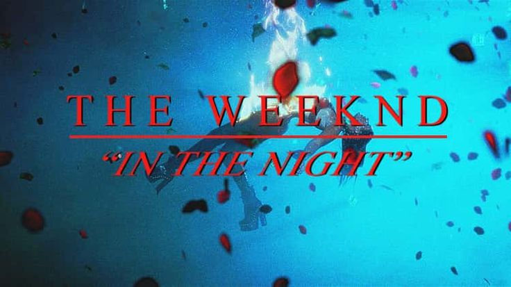 """THE WEEKND- """"In The Night"""""""