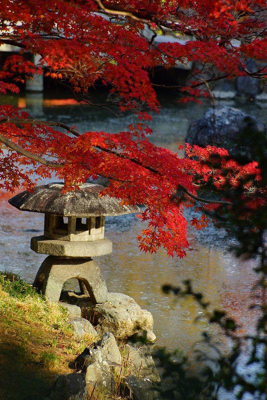 Maruyama park #garden #kyoto #japan