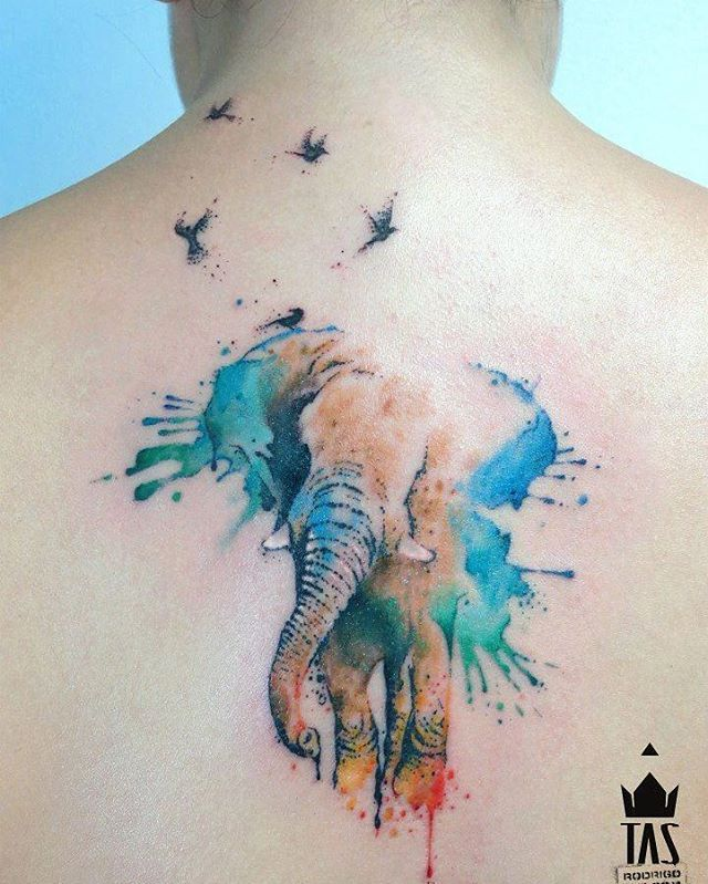 100 Watercolor Tattoos That Perfectly Replicate The Medium: Best 25+ Wildlife Tattoo Ideas On Pinterest