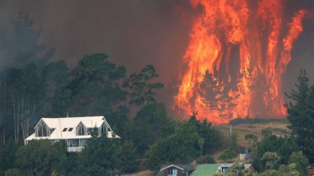 Flames leap out of a large pine plantation behind Westmorland along Worsleys Spur in Christchurch's Port Hills.