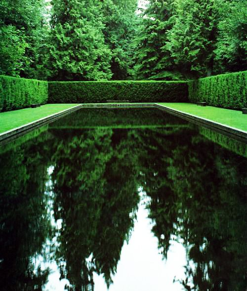 Incredibly green reflecting pool garden style home for Green garden pool jakarta