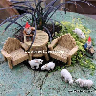 Great website for inspiration and to purchase fairy garden accessories.