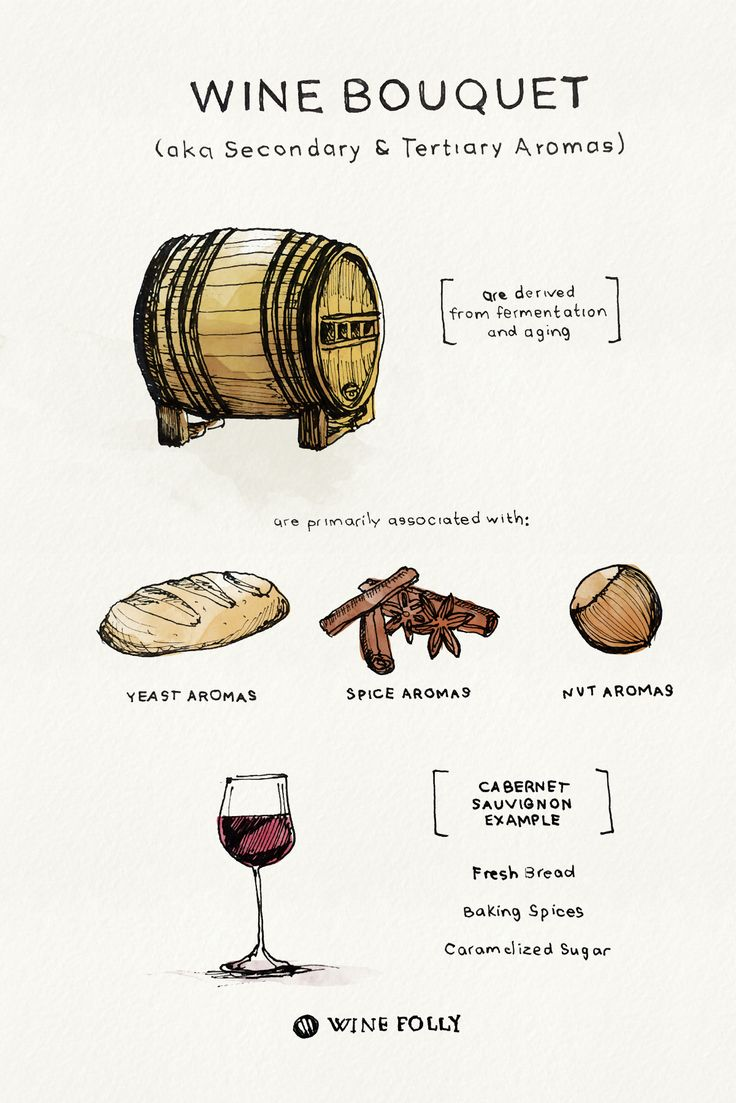 Wine Bouquets - secondary and tertiary aromas - http://winefolly.com/tutorial/tips-on-tasting-wine-bouquet-vs-aroma/