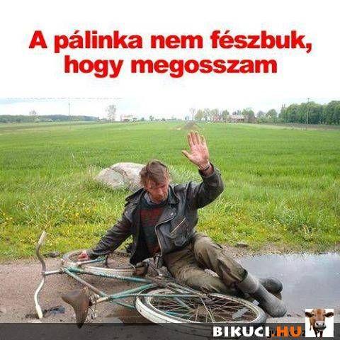 Bikuci.hu - vicces képek, humoros videók