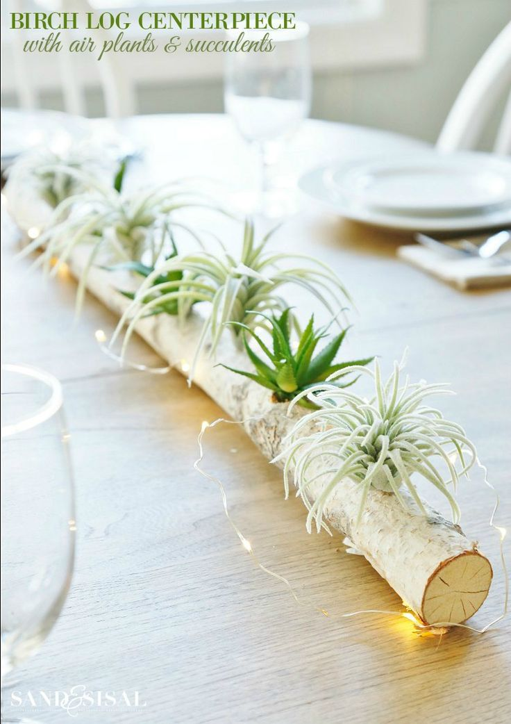 Make this birch log centerpiece with air plants and succulents (faux) in just a few minutes! Add a taper candles and fairy string lights for sparkle.