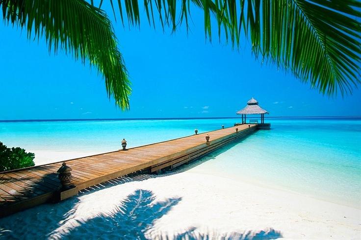 Underbara Maldiverna.  Mer bilder, filmer och information på: http://www.fritidsresor.se/resa/maldiverna/
