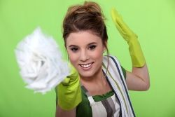 Chapter 2: Packing Up Your Home - Article 2: Clean up tips for moving