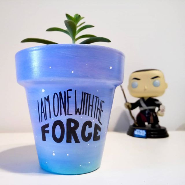 May the 4th be with u.  Maceta $150 Maceta + suculenta $250  Consultas por inbox - CABA  #maythe4thbewithyou #force #starwars #Succulove #succulent #succulentsofinstagram #succulentcity #CactusLove #cactus #CactusLover  #cactusofinstagram #cactusclub #cactusobsession #succulentobsession
