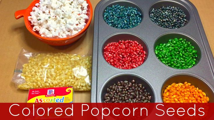 colored popcorn kernels - Google Search