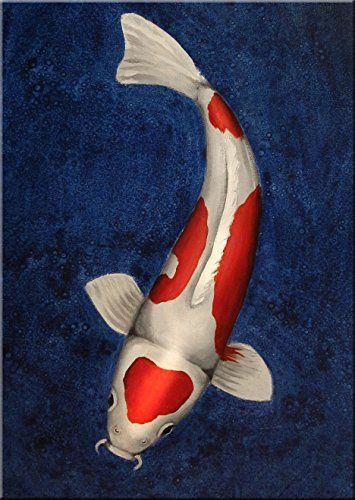 Koi Study #1   Koi Study #1 This piece was created on museum quality gallery wrapped canvas stretched over a hand-crafted wooden stretcher frame. Edges are staple-free and painted to compliment the artwork. No framing necessary! Artwork comes ready to hang with an attached heavy gauge wire. Created with oil paint and alkyd resin. This is an authentic original Tracy Burke painting. All Tracy Burke paintings are one-of-a-kind collectible works.  http://www.finelifeart.com/koi-study-1/