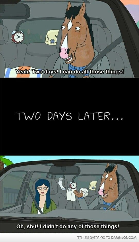 Bojack Horseman: This is my life in college...