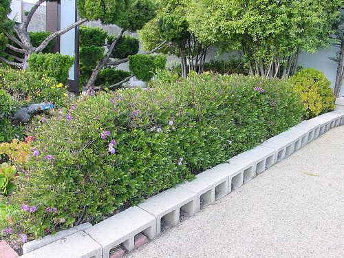 61 best images about cinder block ideas on pinterest for Diy garden borders