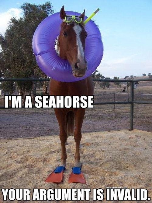 I'm a seahorse!
