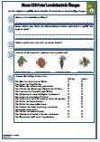 Bäume Verschiedene Fragen zu dem Thema: Baume, HSU, Klassenarbeit, Arbeitsblatt, Lernzielkontrolle, Sachkunde, Sachunterricht, Schulaufgabe, Schulprobe, Übungen, 3Klasse, PDF, Fragen Die Arbeitsblätter sind eine optimale Vorbereitung für eine Klassenarbeit / Schulprobe / Schularbeit.