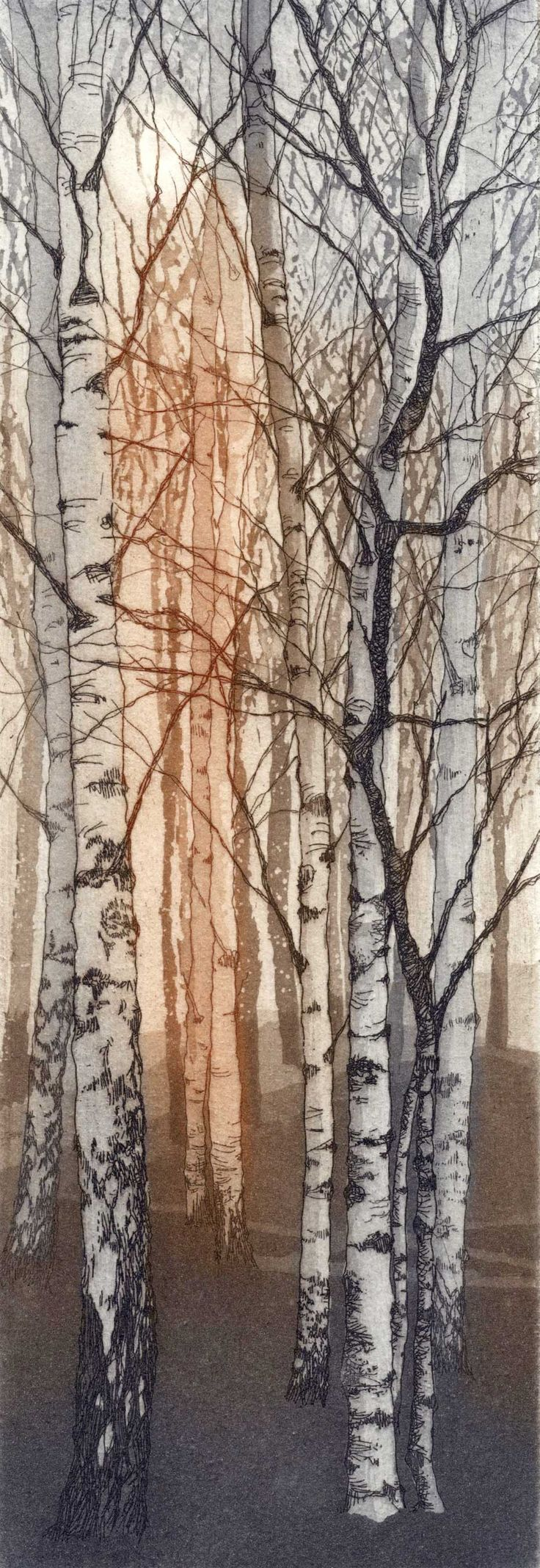 """Young Birches"" etching by Chrissy Norman (inspired by the silver birches that stand outside Tate Modern.)"