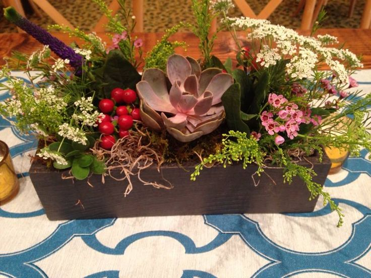 Succulents, Queen Anne's Lace, hypericum berries and wax flower accents....