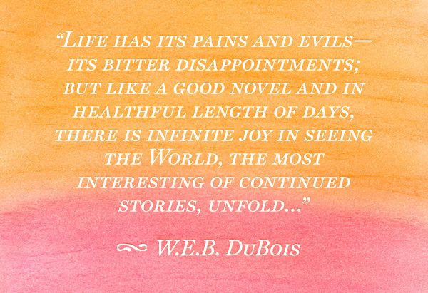 The joy, pain and disappointment of life are like the pages of your life story...embrace your whole life....tell and remember your story is what W.E.B. DuBois/ Quote means to me