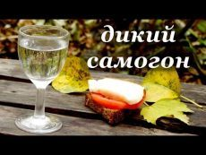 Рецепт самогона без дрожжей, дикий самогон - YouTube