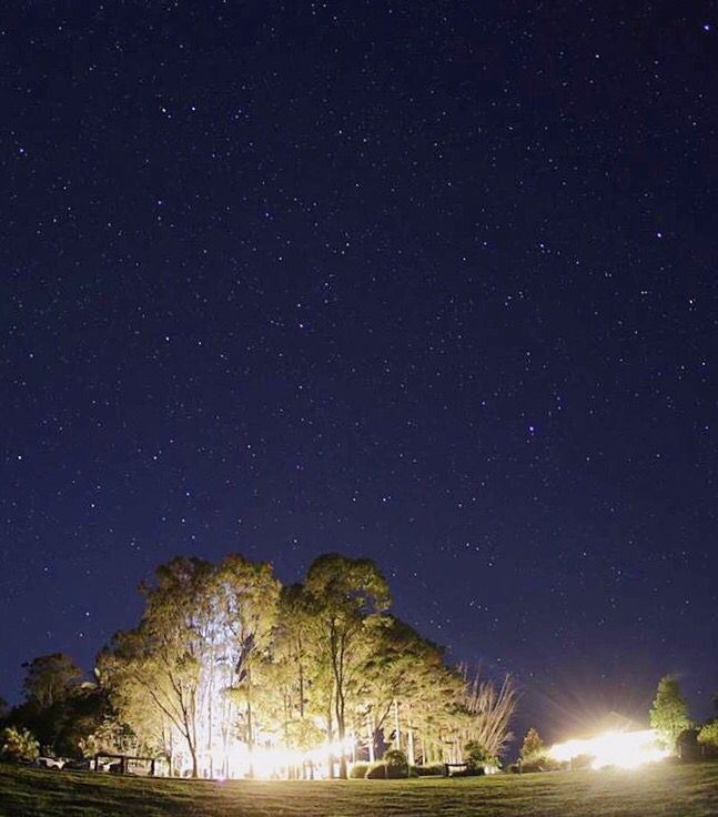 Byron View Farm by night #whiteleaffilms