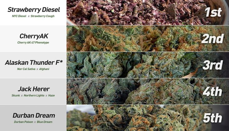 best weed in the world list - Google Search | The Green ...