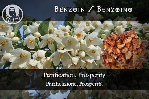 Magical Uses of Benzoin: Purification, Prosperity \\ Usi Magici del Benzoino: Purificazione, Prosperità || L'antro della magia