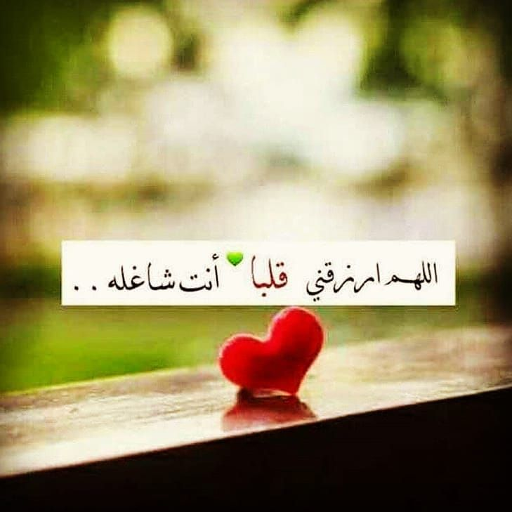 كركبة كلمات جاي من الإكسبلور تابعنا اذا عجبك لحساب Karkabt Klmat Karkabt Klmat Ka Quran Quotes Love Good Morning Arabic Best Urdu Poetry Images