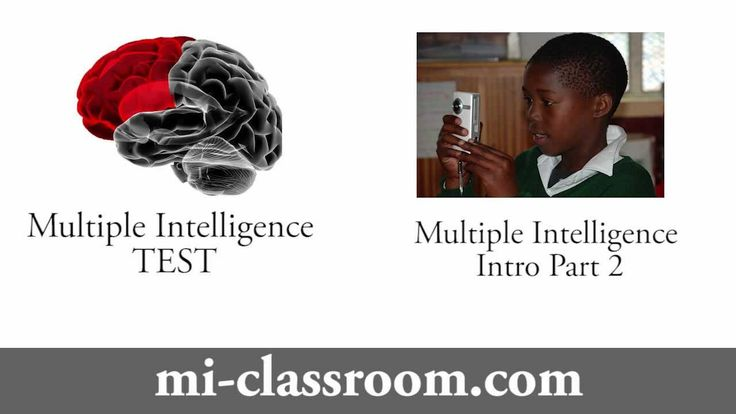 multiple intelligences the theory in practice pdf