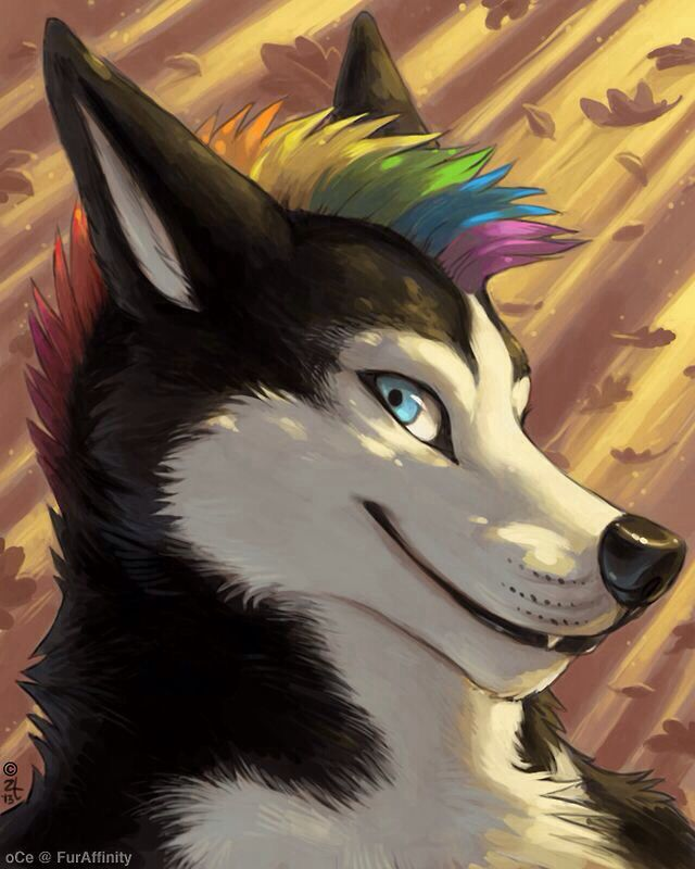 1000+ Images About Furry - ♥ Male ♥ On Pinterest