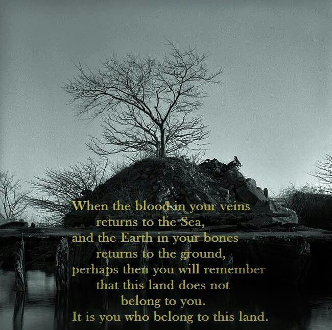 Native American quote Source: Unknown