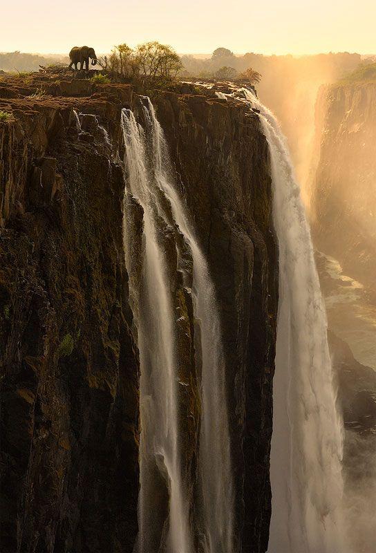Elefante en Cataratas Victoria, Zambia (ZM) y Zimbabue (ZW) - Àfrica Austral / por Marsel van Oosten