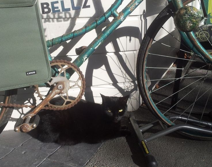 she was quite fond of the ole green bike