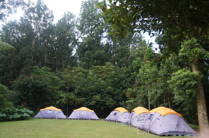 Family Fit: The tents at Tanakita 5 Stars Camp are big enough for 8 adults. (Photo by Icha Rahmanti)
