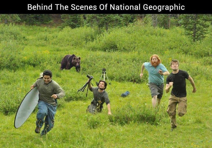 Behind the scenes at National Geographic...