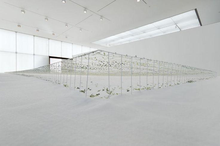 Junya Ishigami, Another scale of architecture – horizon, Toyota Municipal Museum of Art, 2010