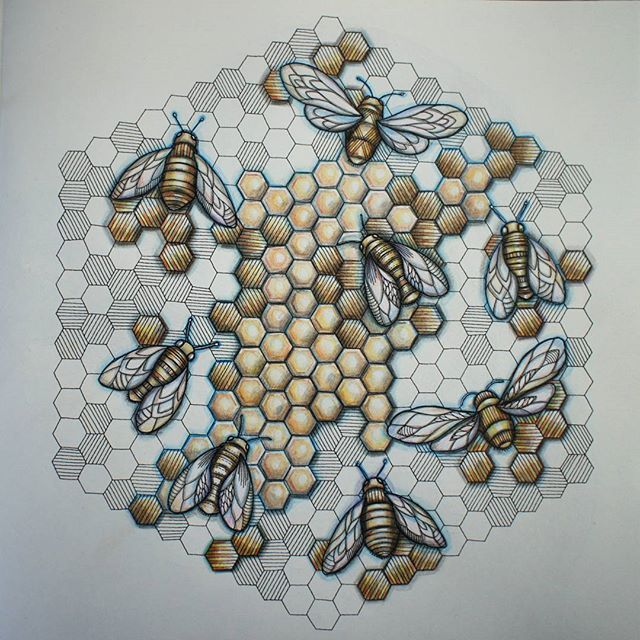 ShareIG Bumbles Bees Adultcoloringbook Colouring Milliemarotta Milliemarottasanimalkindom Nevertooold