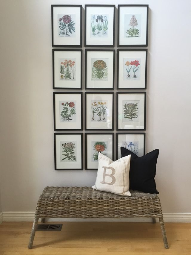 bench, botanical, gallery, wall