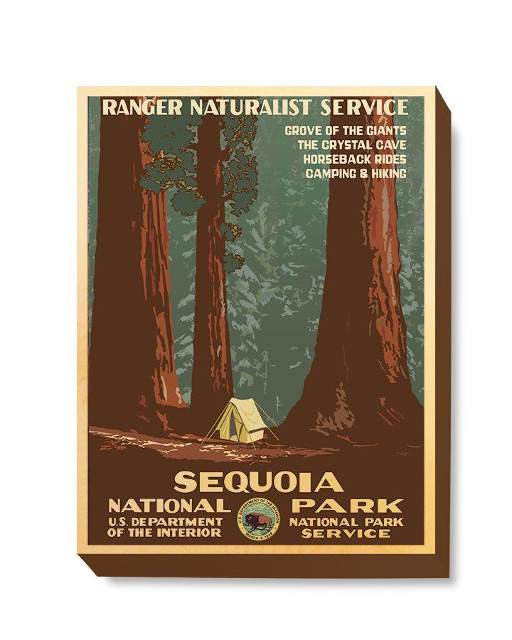 TRV 059 Travel Art Sequoia Park