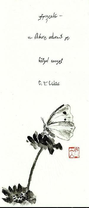 heat butterfly