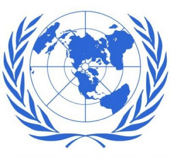 How do I add a primary source for an essay on United Nations?
