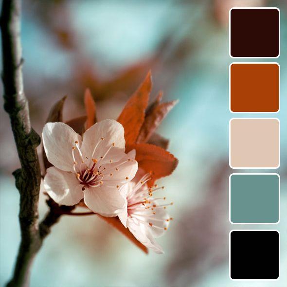 spring-color-pallets1