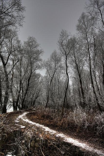 Balatonfűzfő - White frost everywhere     Kedvenc helyeim szintén: