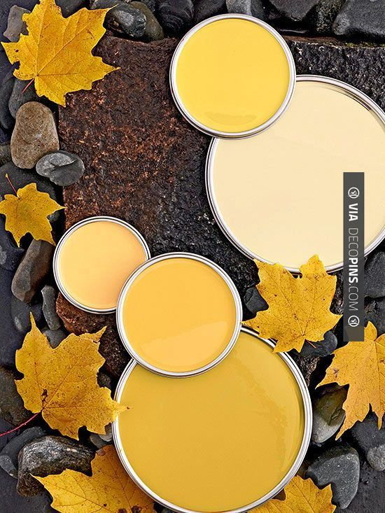 1000 Images About Paint Color Palettes On Pinterest