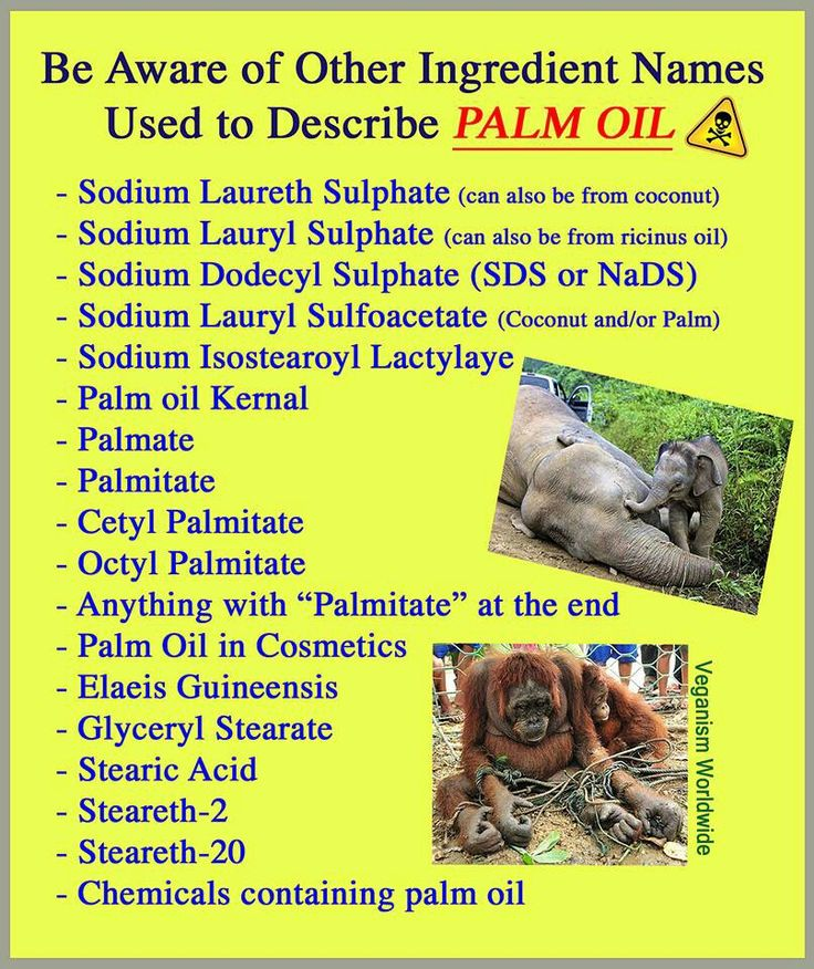 Palm oil - Cheap, renewable, the cost? Just the extinction of entire species of animals. Remember, this could be us someday...